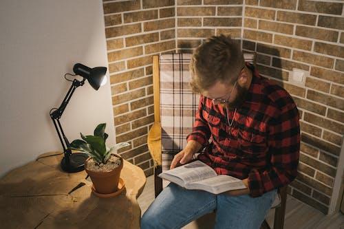 Fotos de stock gratuitas de acredite em deus, adentro, adulto, apartamento