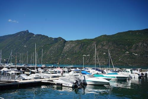 Speedboats Docked on the Harbour