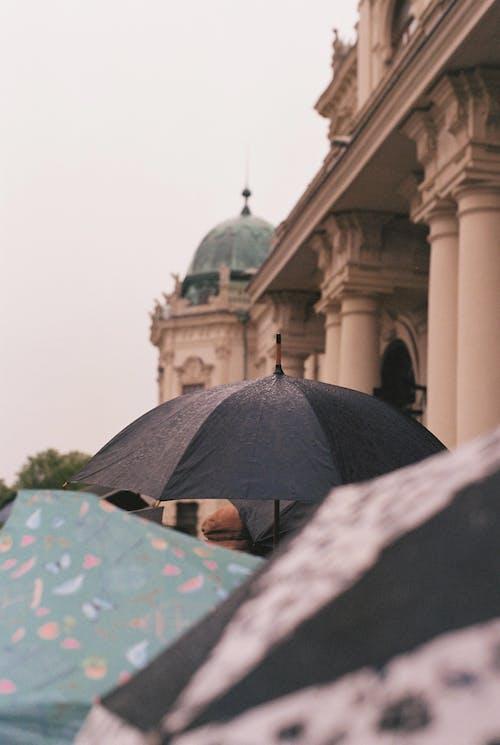 Umbrellas in city near building