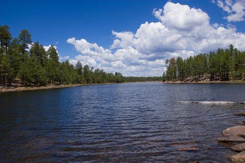 Free stock photo of blue skies, cluds, lake, Pine Lake
