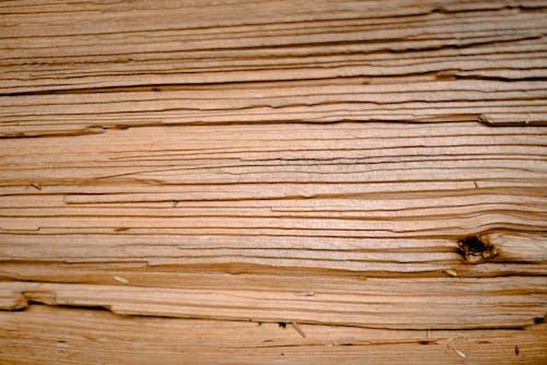 Безкоштовне стокове фото на тему «woodgrain, будівництво, візерунок, грубий»