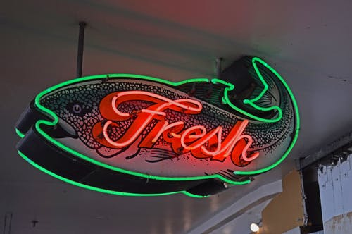 From below of illuminated neon fish shaped signboard with fresh inscription hanging on ceiling