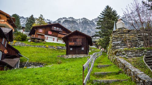 From below exteriors of simple wooden houses located on green grassy slope of hill near snowy mountains in Switzerland