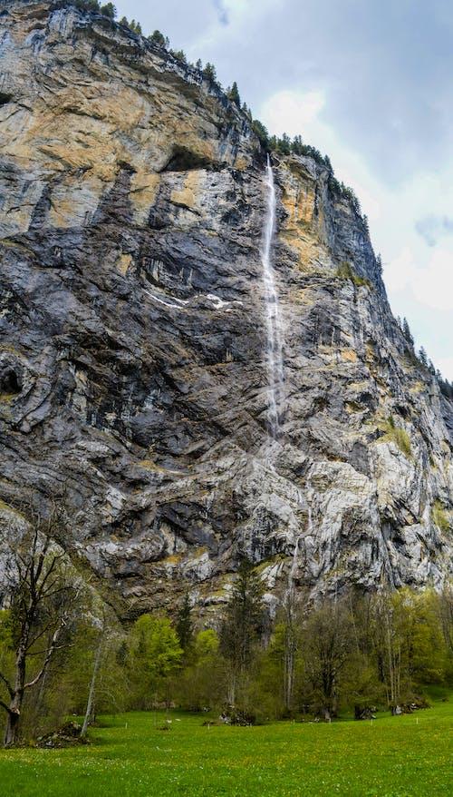 Rocky mountain in green field