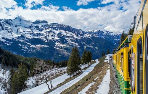 Modern train riding on railroad through coniferous woods in snowy mountainous valley in Switzerland