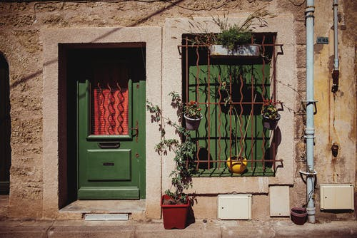 Green door and window with grid of aged shabby stone house decorated with various potted plants on sunny day