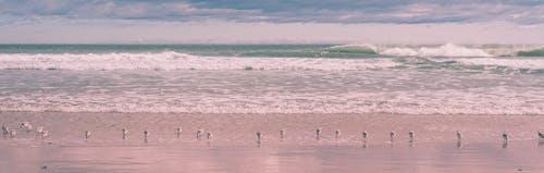 Ilmainen kuvapankkikuva tunnisteilla hiekkaranta, kevyt, kirkas, kuilu