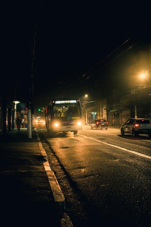 交通, 人行道, 公共 的 免費圖庫相片
