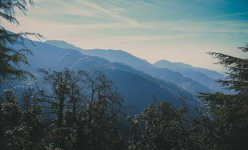 View of Foggy Mountain Range