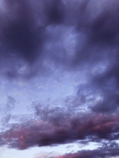インスピレーション, カラフル, サイレントの無料の写真素材