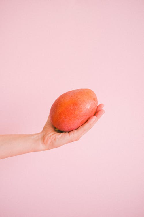 Crop unrecognizable person holding ripe yummy mango against light pink background in studio