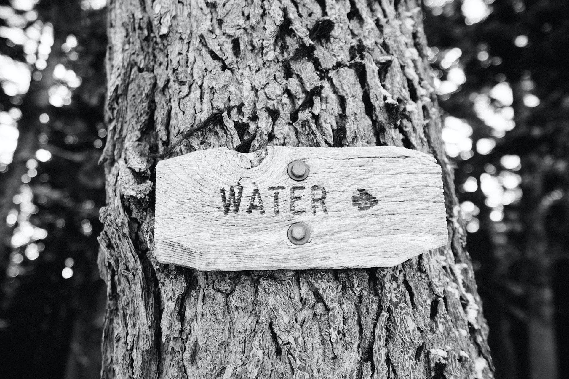 Grayscale Photography of Water Signage