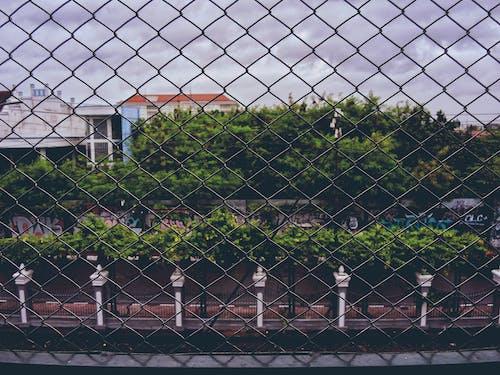 #wire #street #rainy #photography #cage 的 免費圖庫相片