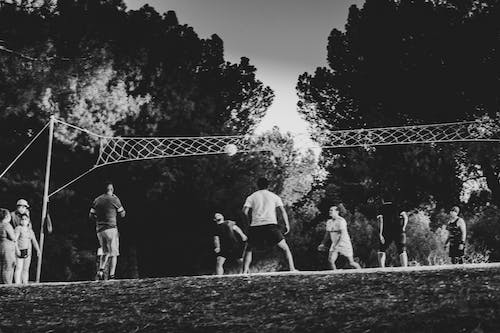 Free stock photo of ball, park, people, sport