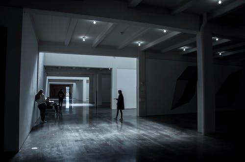 Free stock photo of art, art gallery, art museum, building