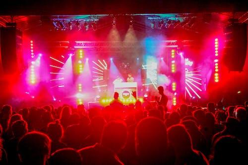 Free stock photo of canon 6 d, crowd, dj