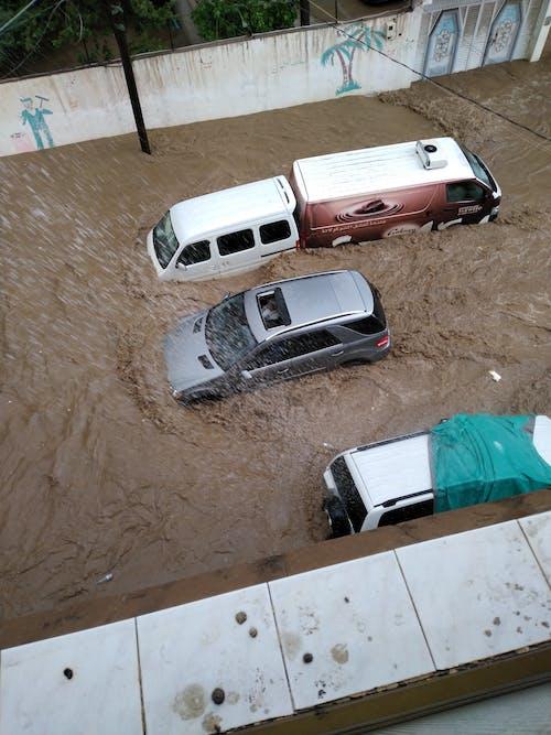 sel, Su, yağmur, yoğun yağış içeren Ücretsiz stok fotoğraf