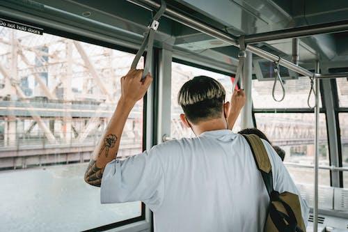 강, 고리, 관광객, 광선의 무료 스톡 사진