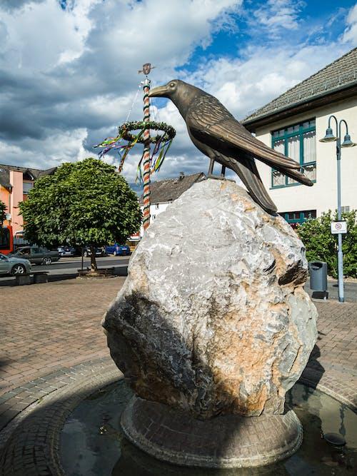 Fotos de stock gratuitas de cuadrado, cuervo, feria, fuente
