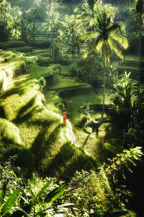 Drone view of distant female in maxi dress standing on lush verdant meadow in magnificent exotic highlands in sunlight