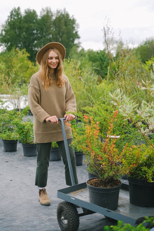 Full length young content female gardener in warm sweater and hat carrying lush verdant potted plants placed on cart in botanical garden