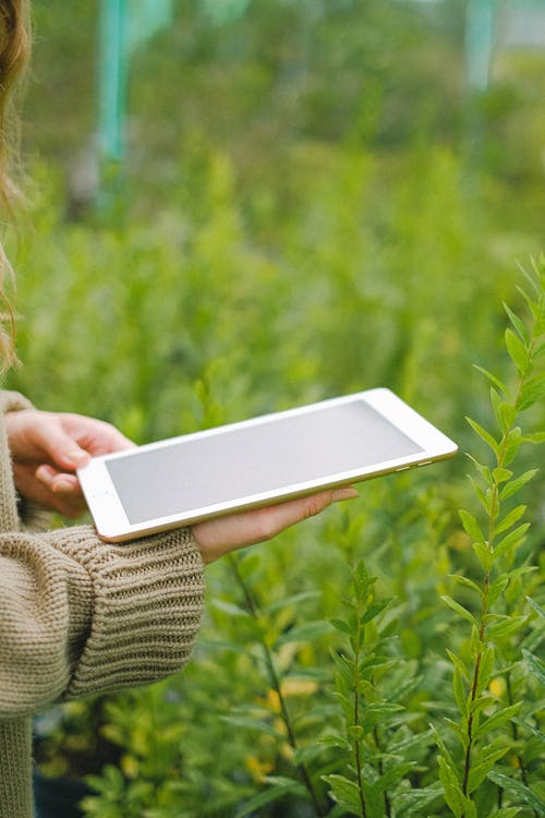 Woman using tablet for collecting information about plants