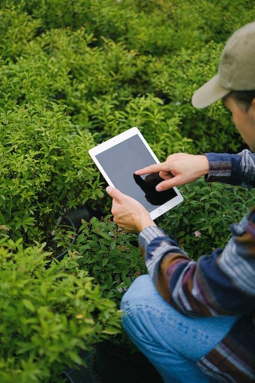 Fotos de stock gratuitas de agronomía, angulo alto, anónimo, artilugio