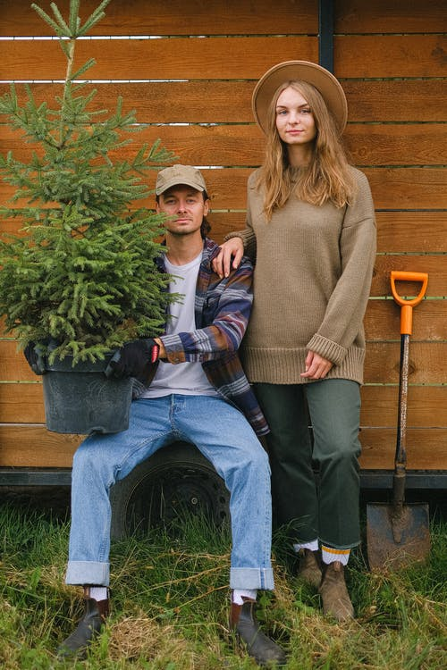 Full body of young couple with coniferous tree growing in pot near shovel in farm