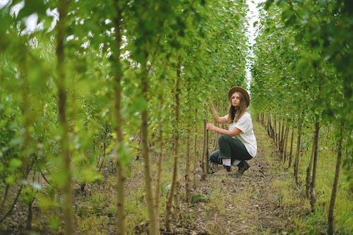 Kostnadsfri bild av agronomi, arbetare, arbete, arbetskraft