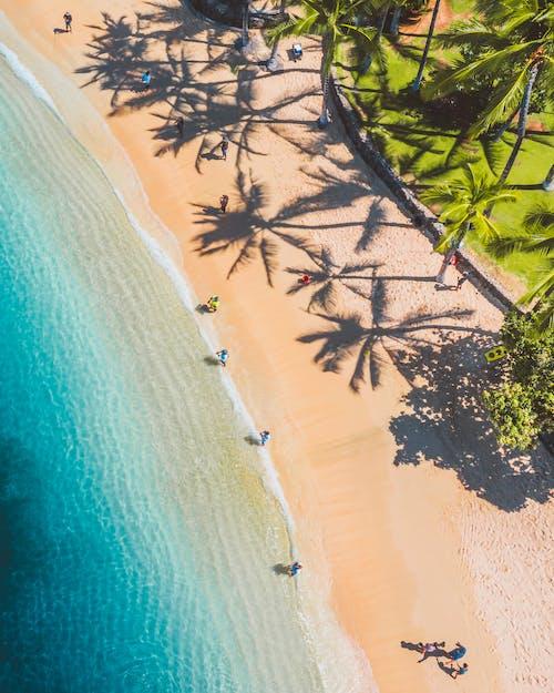 Безкоштовне стокове фото на тему «аерознімок, берег, берег берега»