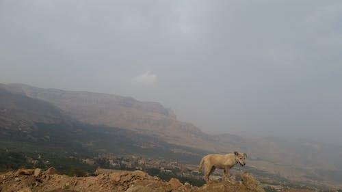 dağ, doğa, görünüm, güzel içeren Ücretsiz stok fotoğraf