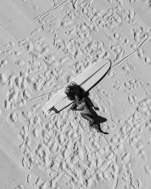 Základová fotografie zdarma na téma akce, křídlo, látat, létání