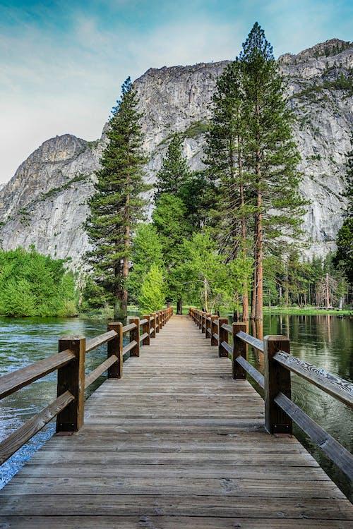 A Footbridge Across the Lake
