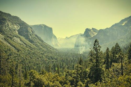 Foggy Sierra Nevada Mountain