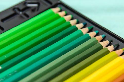 Colored Pencils in a Case
