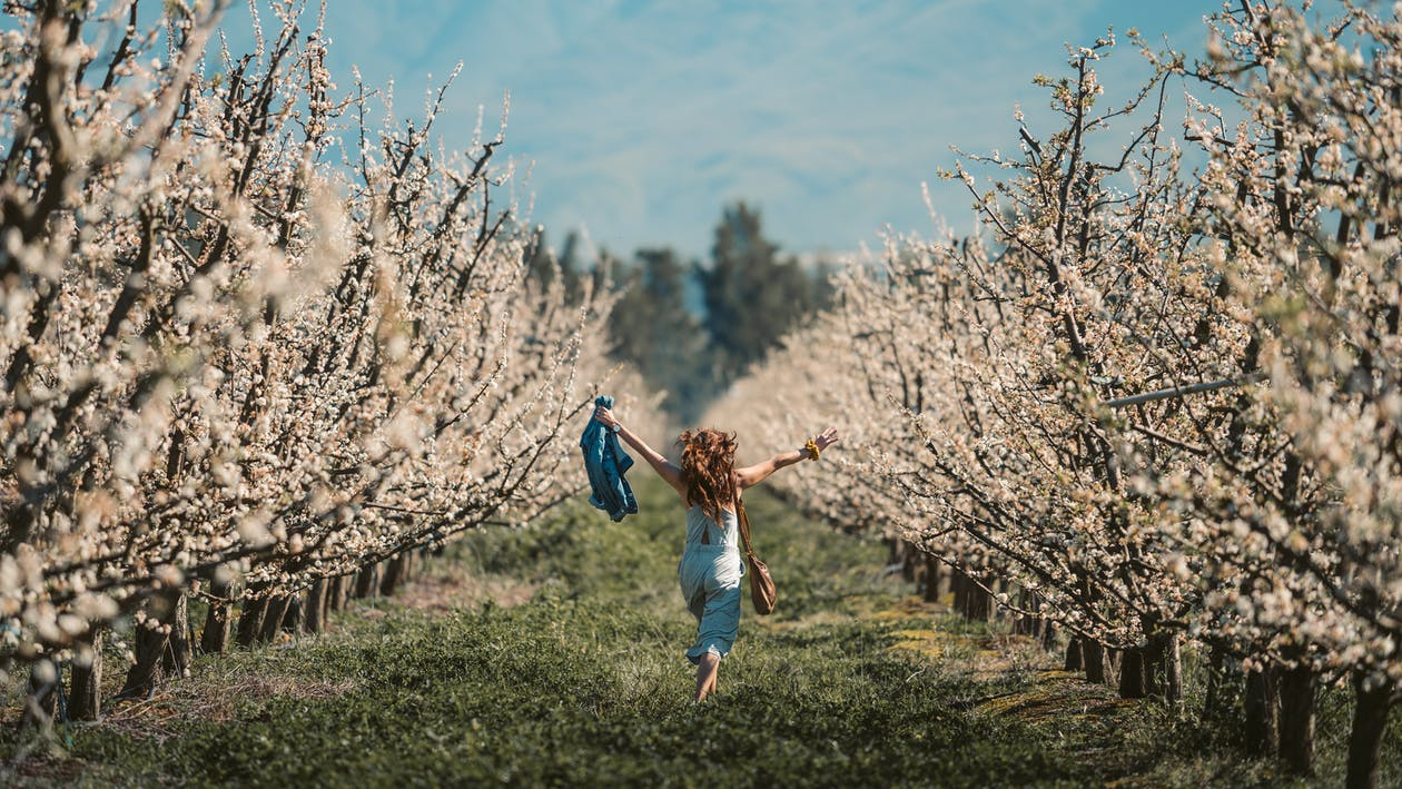 Girl in White Long Sleeve Shirt and Blue Denim Jeans Jumping on Brown Tree