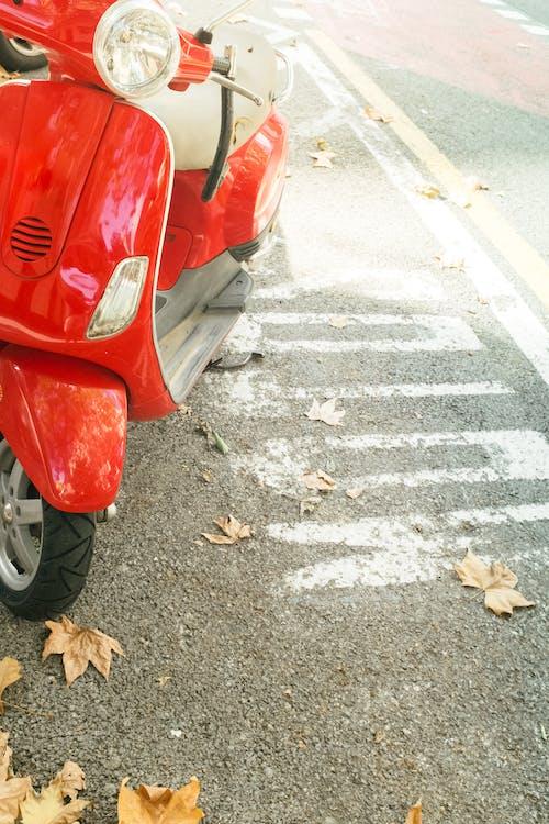 Czerwony I Czarny Samochód Na Pasie Dla Pieszych