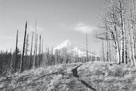snow, black-and-white, mountain