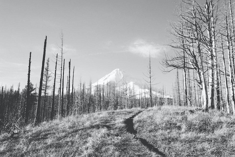 black-and-white, ice, mountain
