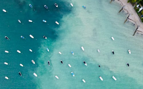 摩托艇在海岸附近在白天的海水