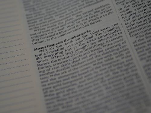 Extreme Close-Up Shot of a Bible Text