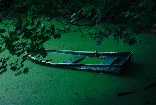 Black Metal Boat in the Green Water
