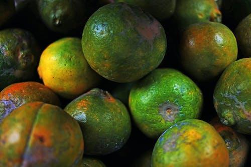 Kostnadsfri bild av färska frukter, frukt, orange frukter
