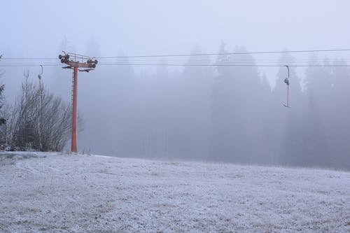 Безкоштовне стокове фото на тему «білий, забули, зима»