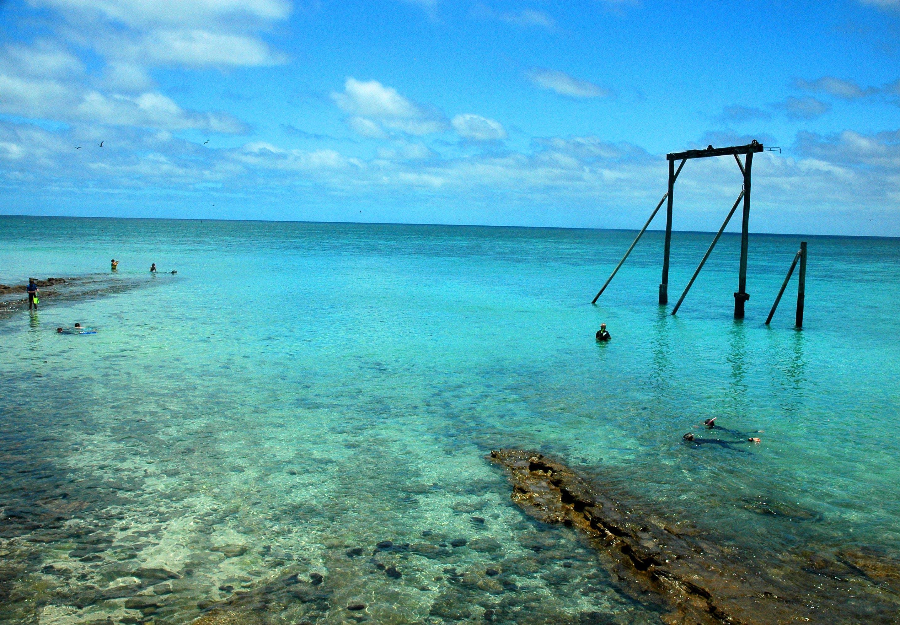 Free stock photo of australia, beach, ocean, oceanshores