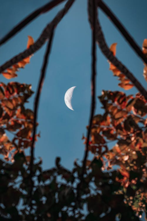 White moon on cloudless sky