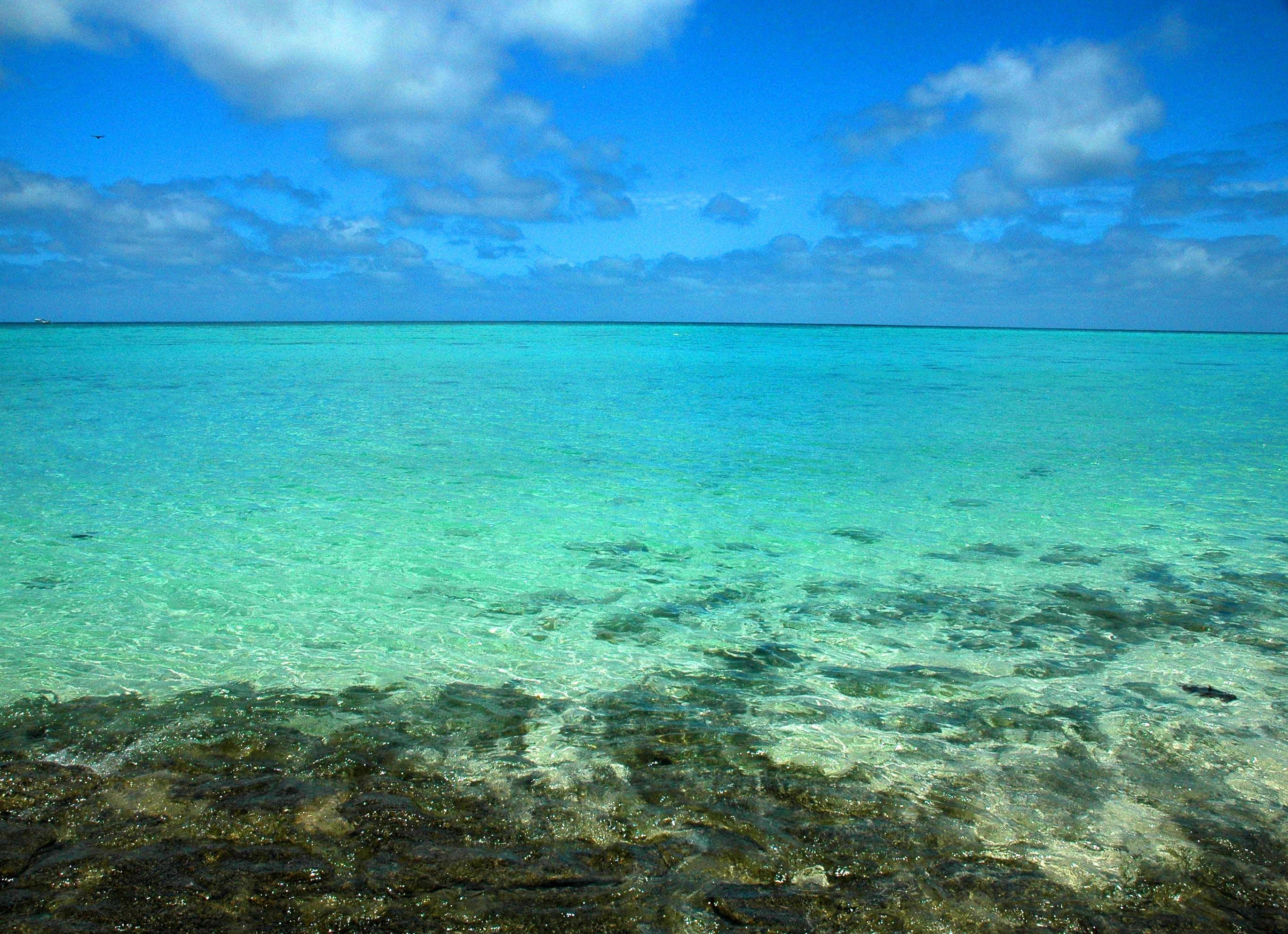 Free stock photo of australia, blue, blue sky, ocean