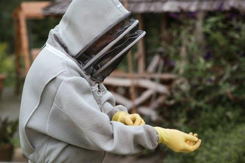 Crop male beekeeper in protective uniform and gloves standing in apiary while preparing for work