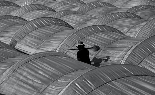 Anonymous gardener walking near greenhouses on sunny day