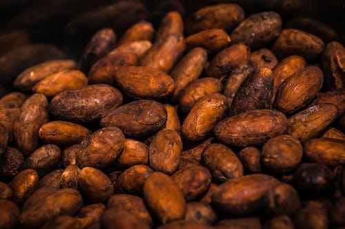 갈색, 건강, 고기, 곡물의 무료 스톡 사진